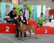 83^ ESPOSIZIONE INTERNAZIONALE CANINA